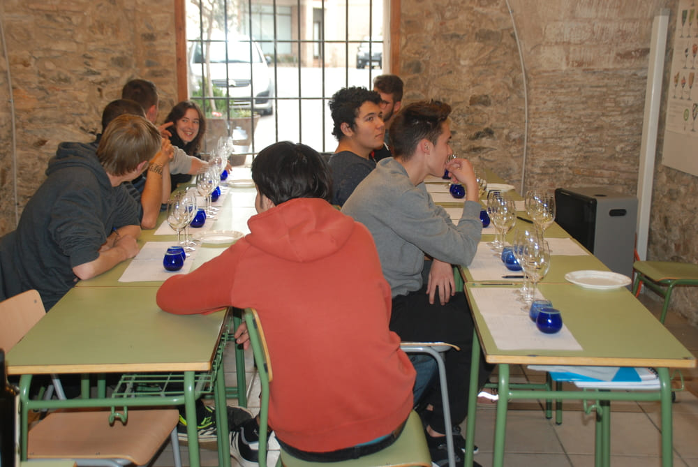 Olis d'Oliva i Vins - Institut Llançà - El Centre