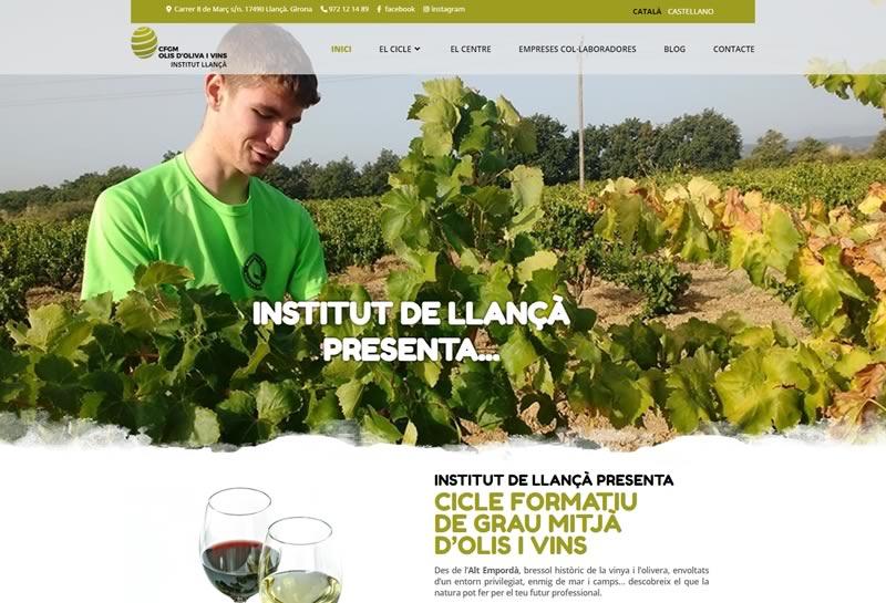 Olis d'Oliva i Vins | Blog